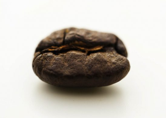 Free stock photo Close-up of coffee bean on white background