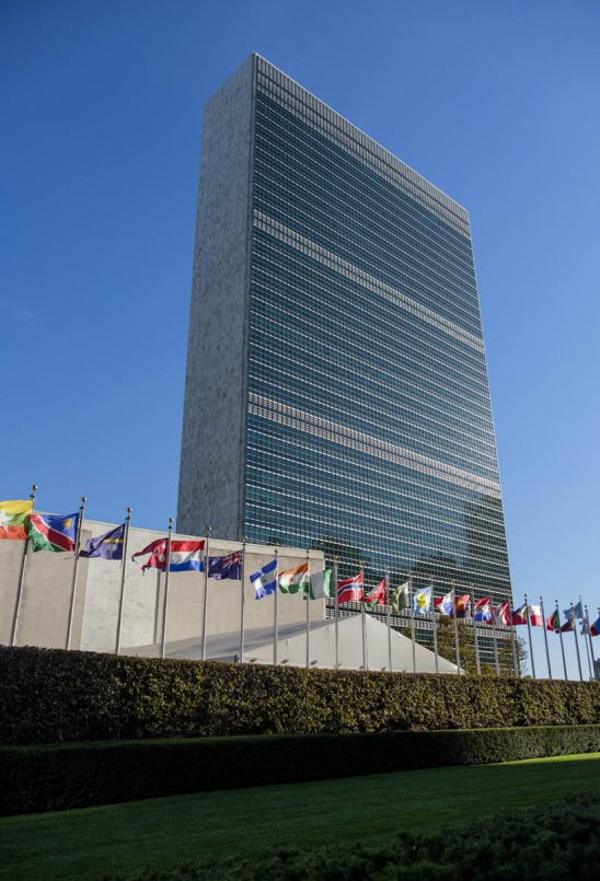 Free stock photo United nations and national flags against blue sky