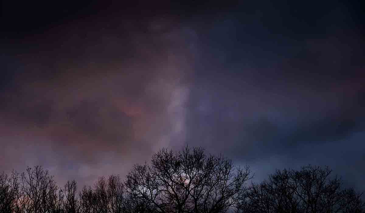 Free stock photo Low angle view of silhouette bare trees against storm clouds during sunset