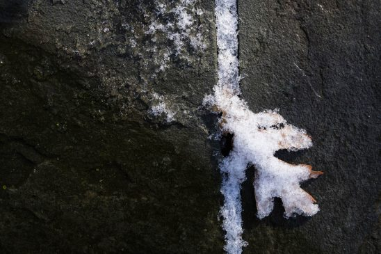 Free stock photo Close-up of snow and leaf in cracked sidewalk