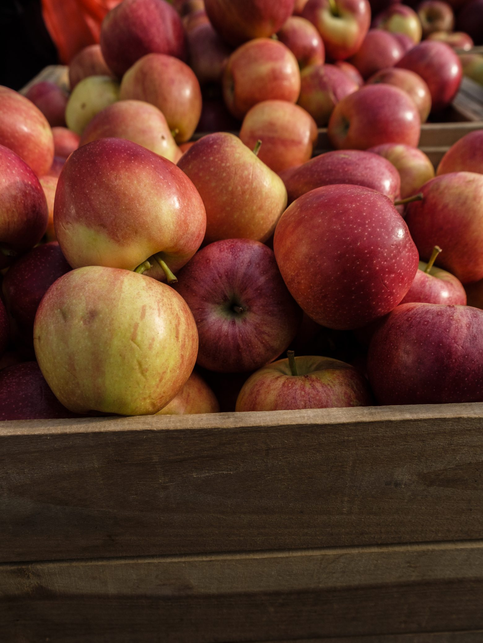 Free stock photo Close-up of apples in wooden crate