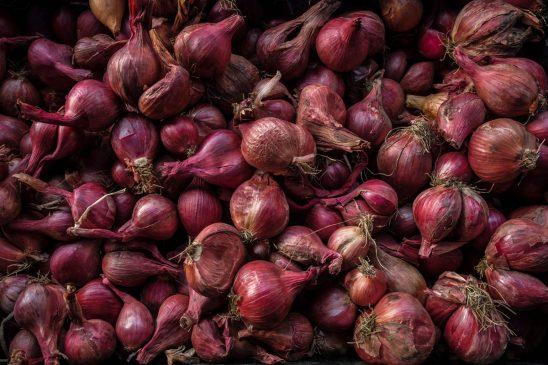 Free stock photo Full frame shot of onions
