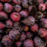 Free stock photo Full frame shot of beet roots