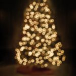 Free stock photo Defocused image of illuminated Christmas tree