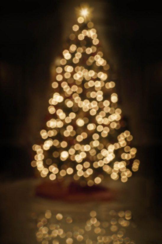 Free stock photo Defocused image of illuminated Christmas tree