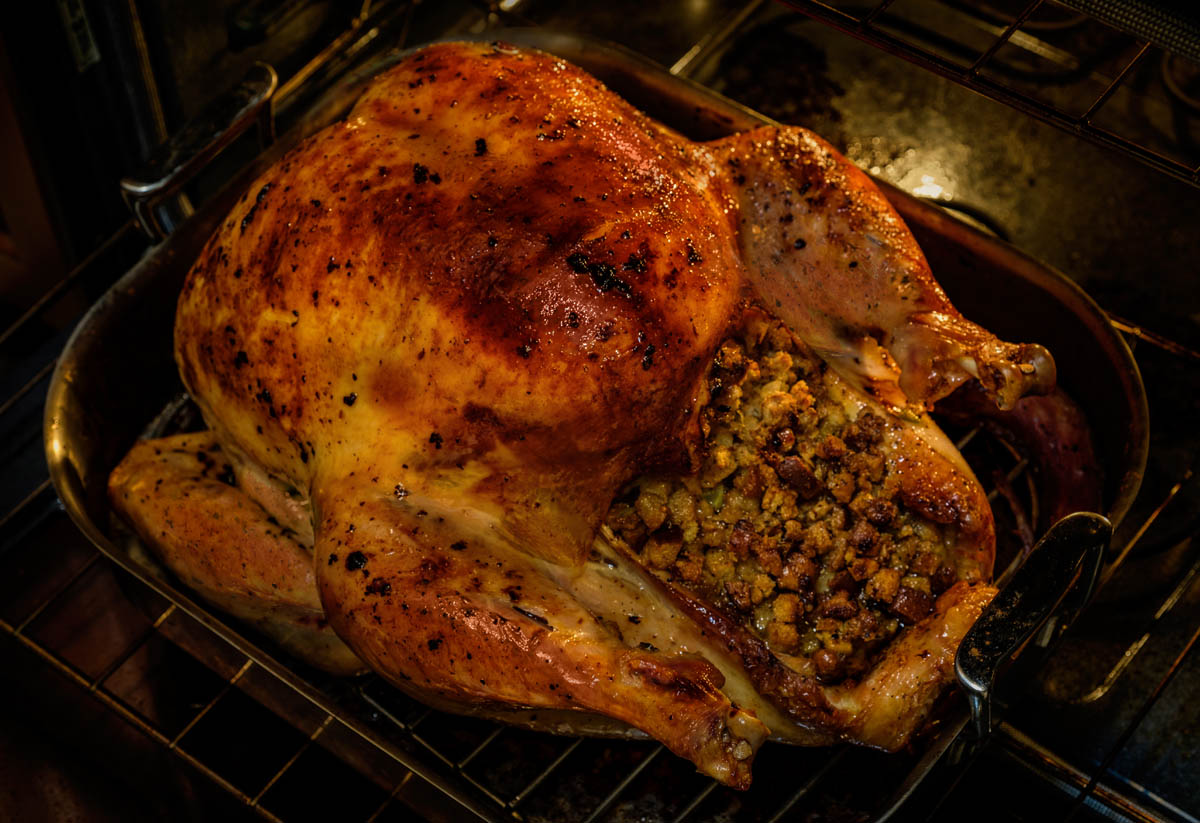 Free stock photo Close-up of roasted turkey for Thanksgiving in oven