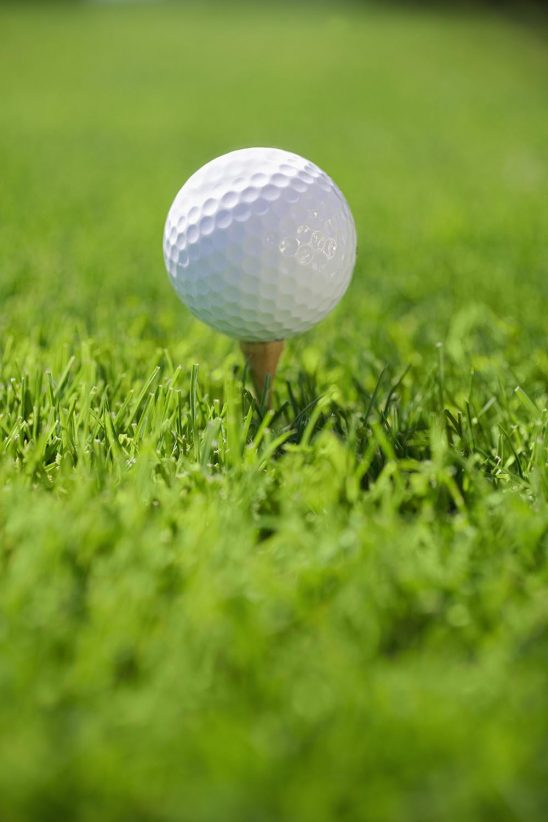 Free stock photo Golf Ball on tee in grass
