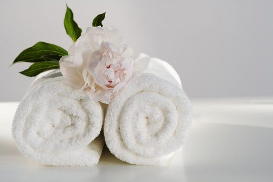 Free stock photo White towels rolled up with a flower on top