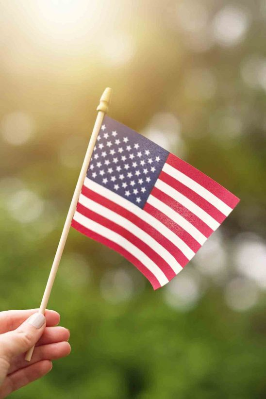 Free stock photo Close-up of hand holding american flag