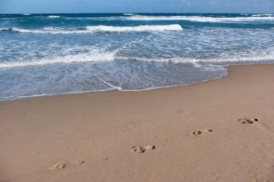 Free stock photo Footprints in the sand by the ocean