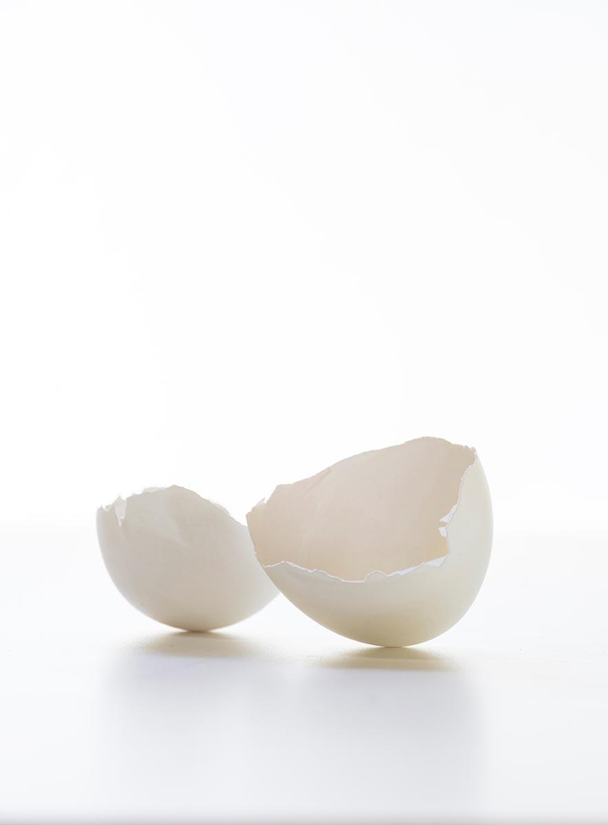 Free stock photo Broken white egg shell on a white background