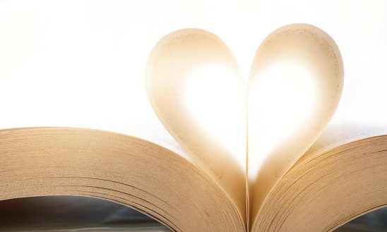 Free stock photo Pages of a book shaped like a heart
