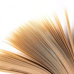 Free stock photo Pages of an open book