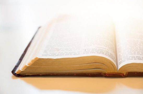 Free stock photo Open bible with white background