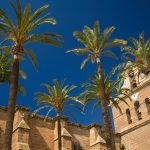 Free stock photo Palm trees and the Cathedral of Almeria, Spain