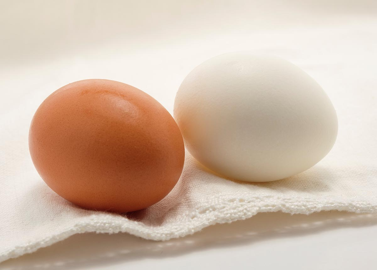 Free stock photo A brown and white egg on a white cloth
