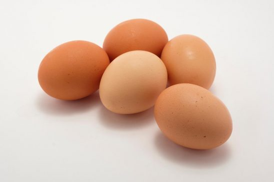 Free stock photo Group of brown eggs