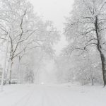 Free stock photo Distant car coming down a winter road covered with snow