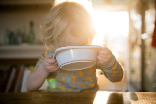 Free stock photo Child drinking from a bowl