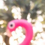 Free stock photo Defocused view of a plastic flamingo head