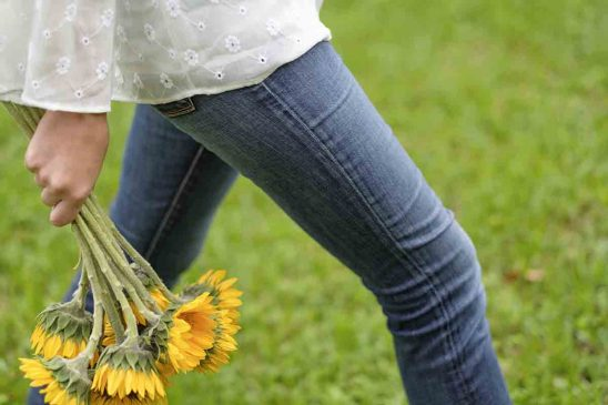 Free stock photo Midsection of woman holding gerbera daisies while walking on field