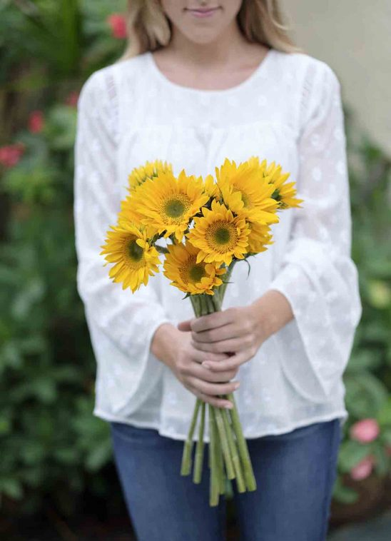 Free stock photo Midsection of woman holding gerbera daisies in park