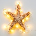 Free stock photo Starfish outlined with bright LED lights