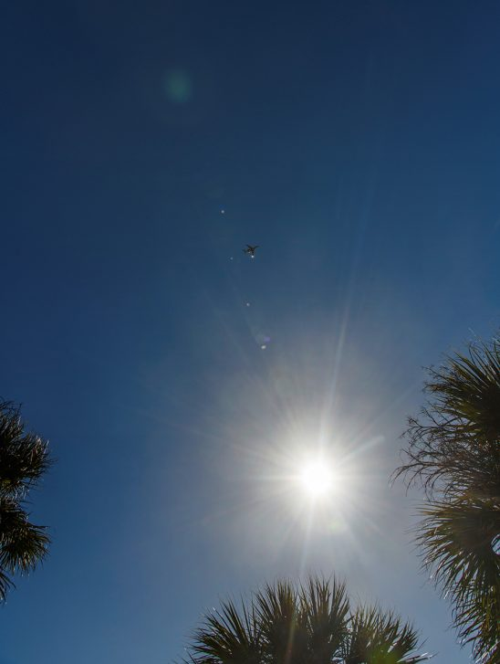Free stock photo Jet plane with sun and palm trees