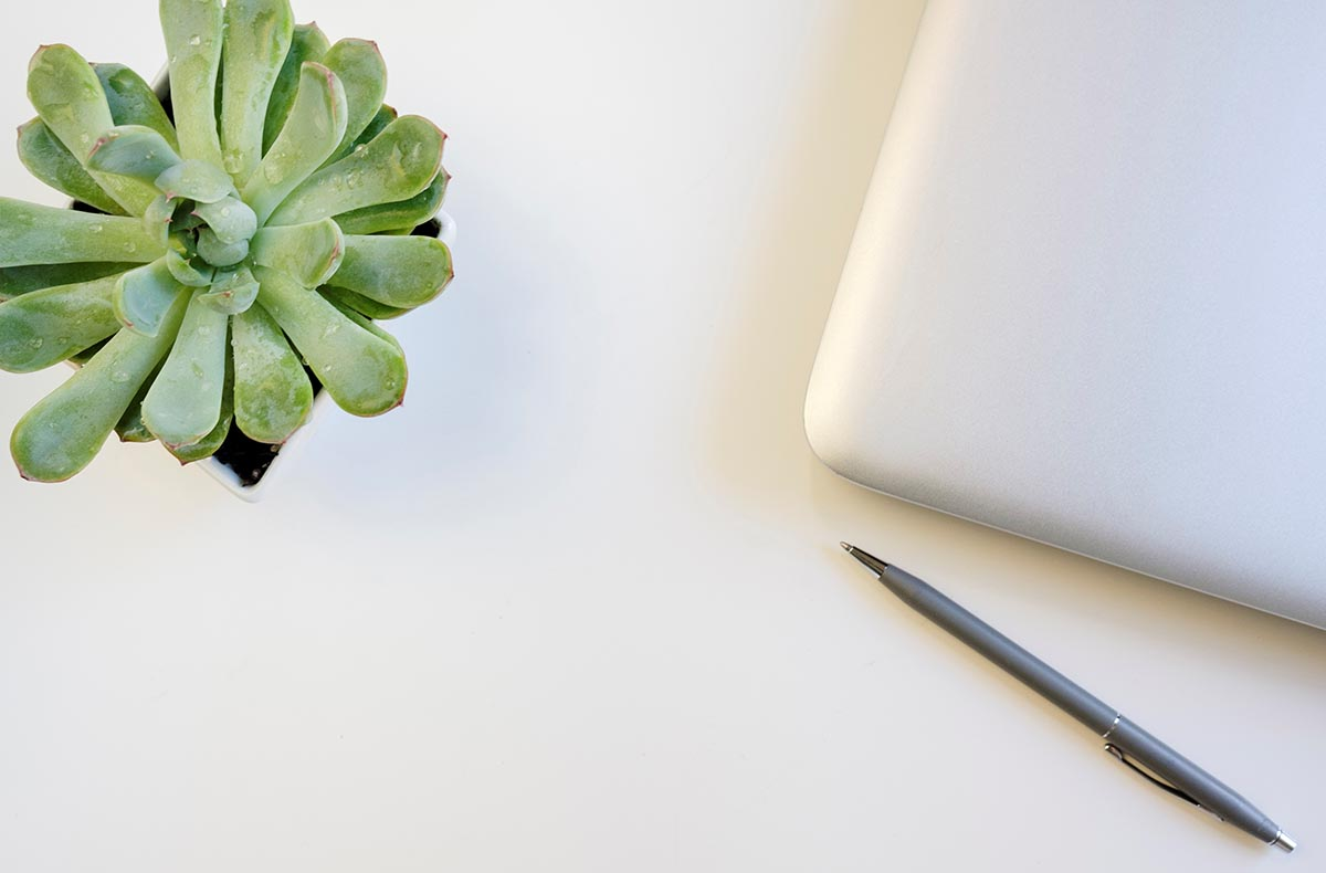 Free stock photo Desktop with a laptop and pen next to a succulent plant