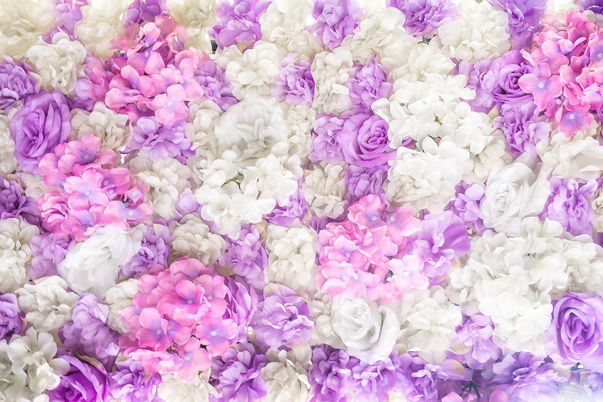 Free stock photo Background of pastel and white flower arrangement