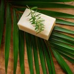 Free stock photo White bar of soap and palm leaf