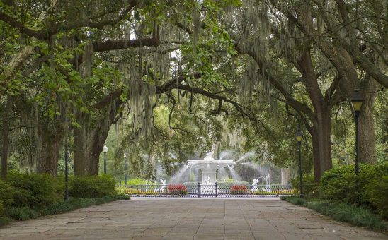 Free stock photo Tree lined sidewalk and fountain in Forsyth Park, Savannah