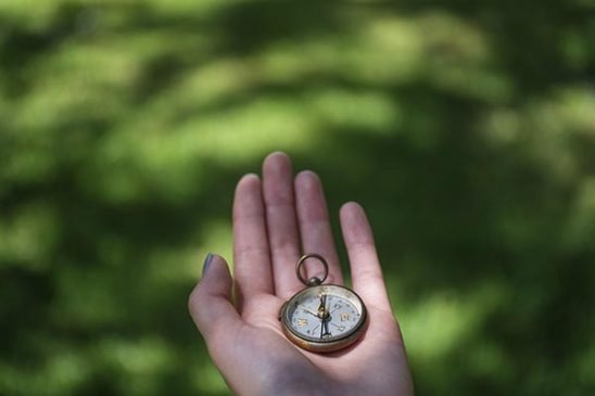 Free stock photo Woman's hand holding a compass against a green background
