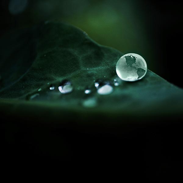 Free stock photo Outline of the world in a drop of rain water on a leaf