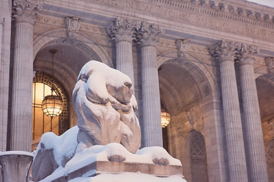 Free stock photo Lion statue covered in snow outside the New York Public Library