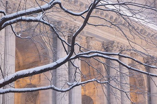Free stock photo New York Public Library with falling snow