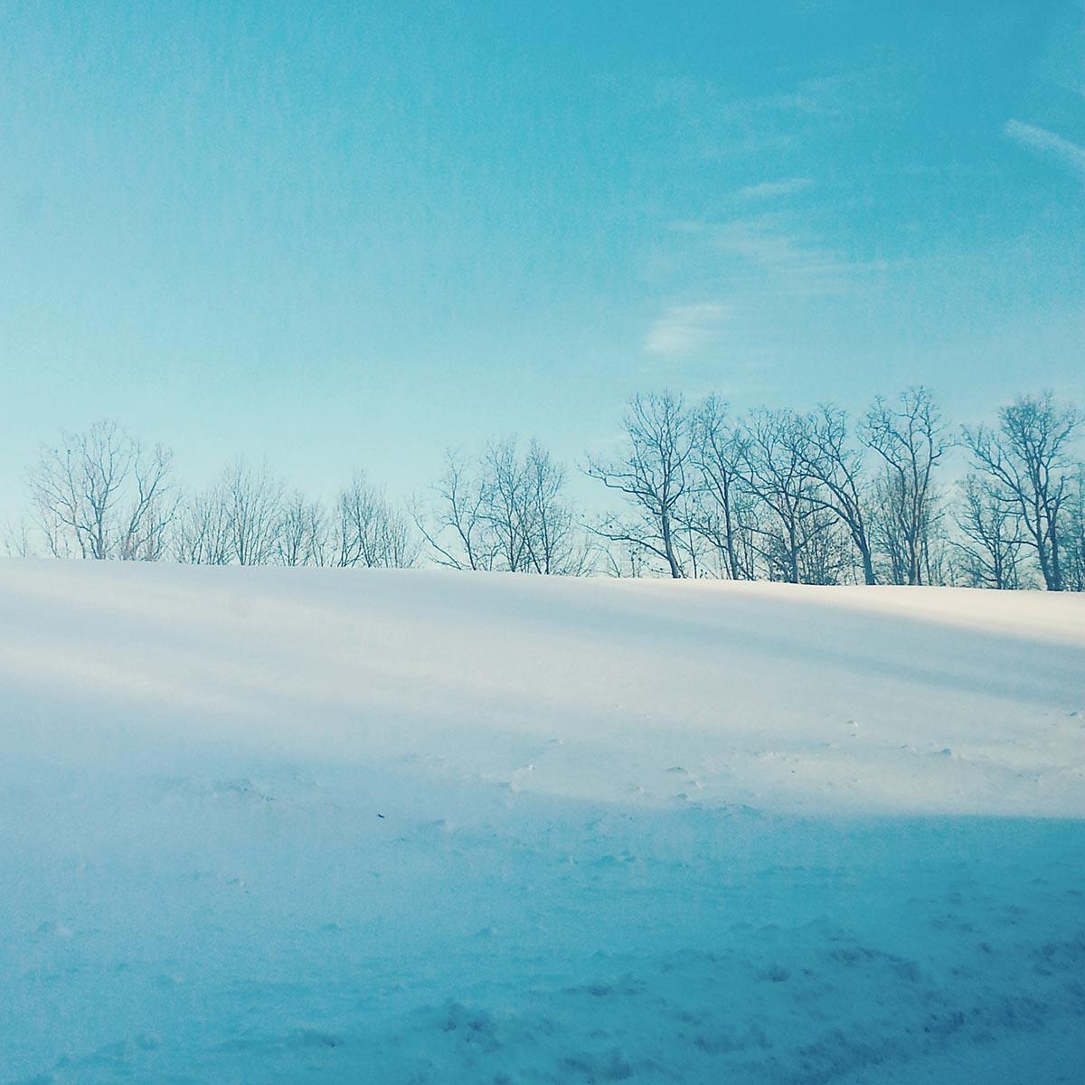 Free stock photo Winter snow scene with bare trees