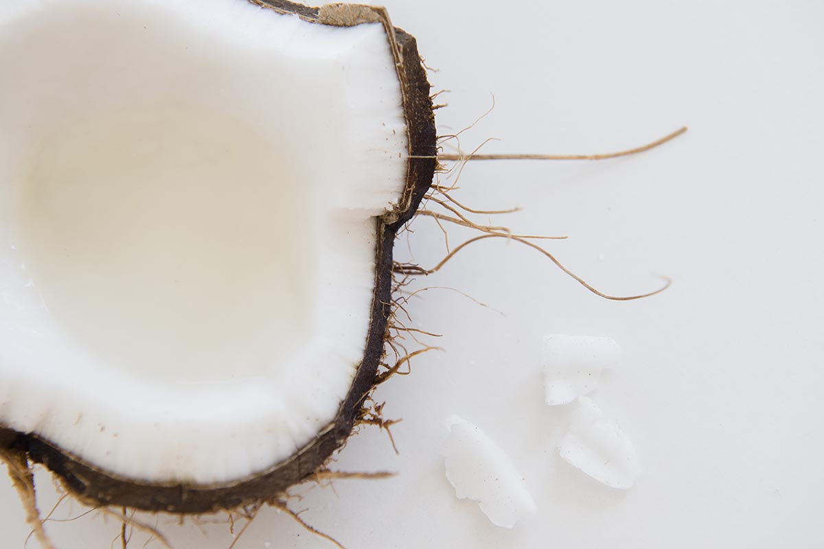Free stock photo Graphic down angle on a split open coconut on a white background