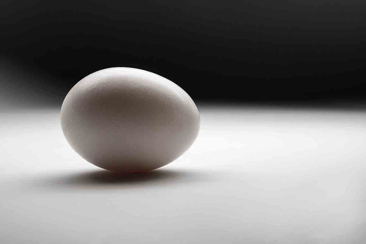 Free stock photo Close-up of egg on table