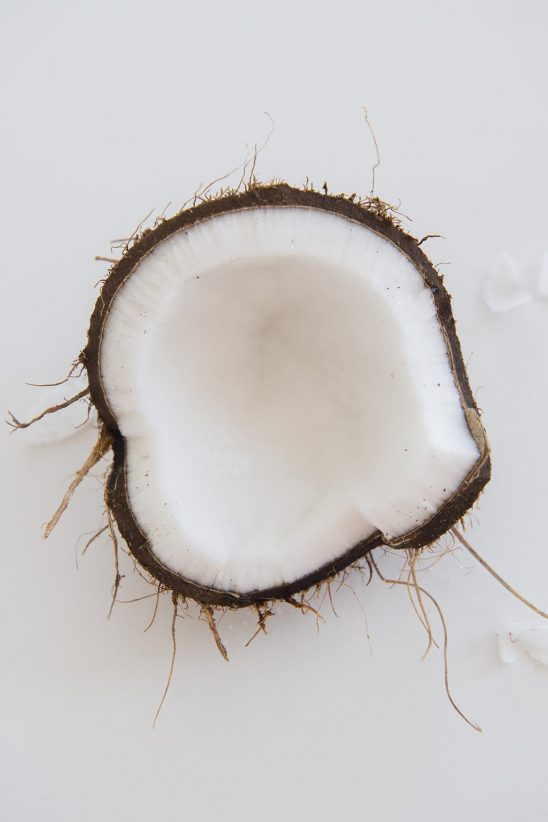 Free stock photo Straight down angle showing an open coconut on white background