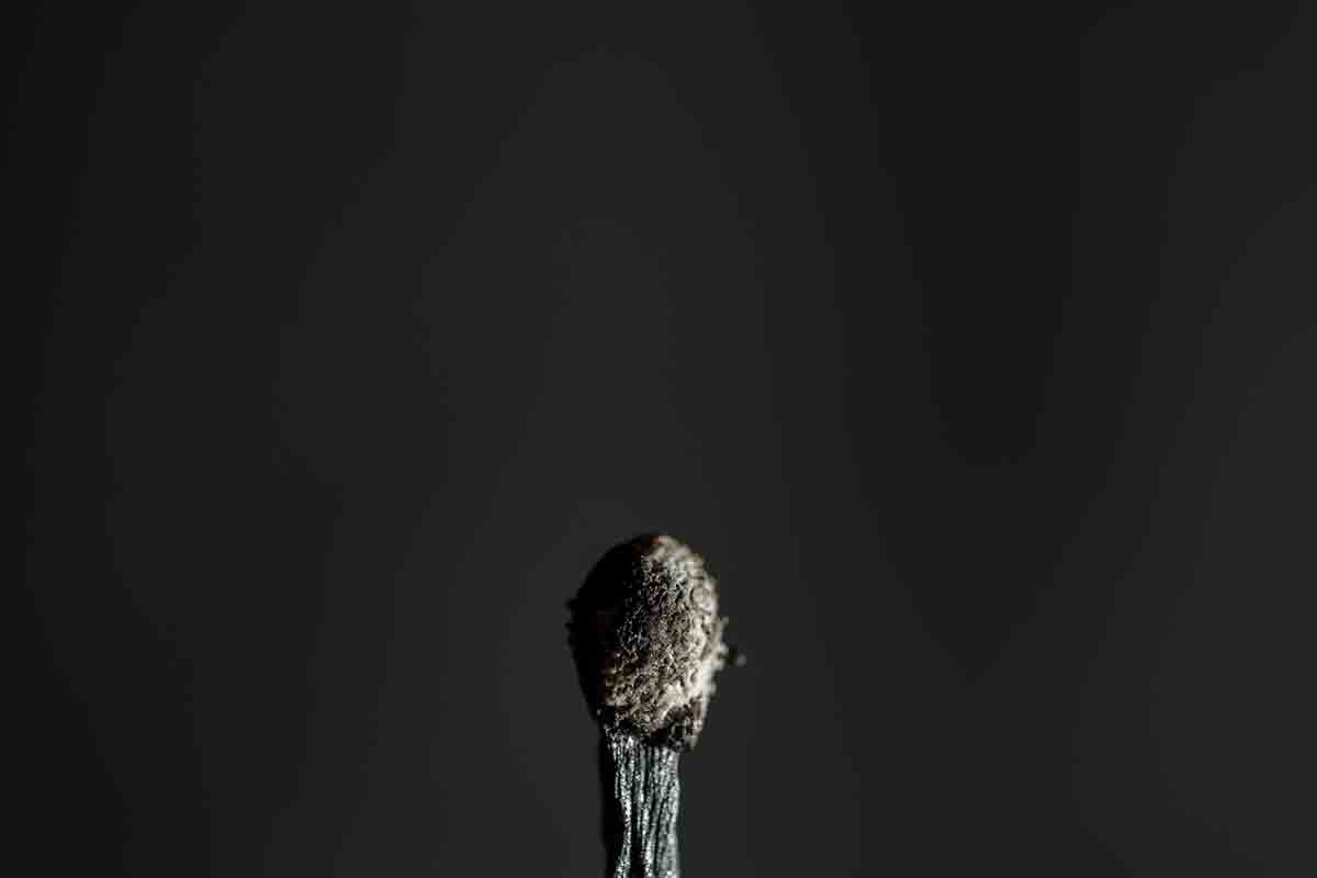 Free stock photo Close-up of burnt matchstick over black background