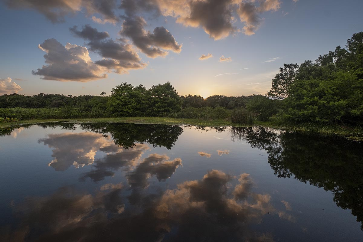 Free stock photo Sun setting in the Green Cay Wetlands preserve, Florida