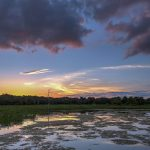 Free stock photo Sunset with clouds in the Green Cay Wetlands, Florida