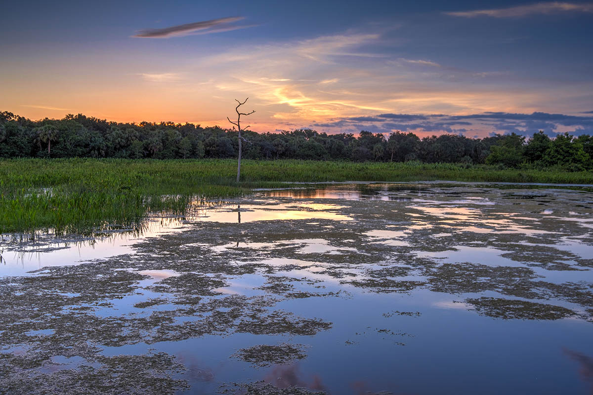 Free stock photo Sunset in the Green Cay Wetlands, Florida