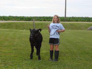 young girl on a farm leading a black calf on a halter