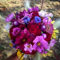 A large bouquet of dazzling pink, red, blue, yellow, and white flowers grown at The Farm at Stonehill and created for a beautiful bride.