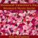 Stonewall Valentine's Day Weekend Movie Social