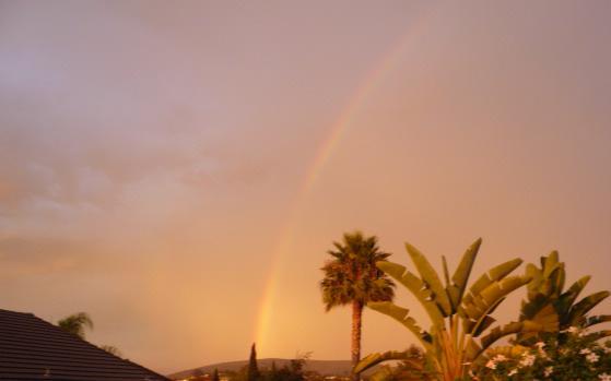 Vista Rainbow