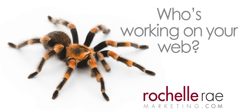 rrm-teaser-spider2.jpg