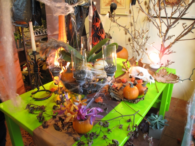 Halloween 2009 IMG_4385 [640x480].JPG